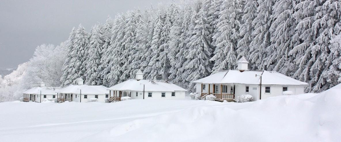 winter.10