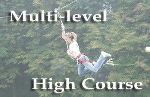 multi.level.pg