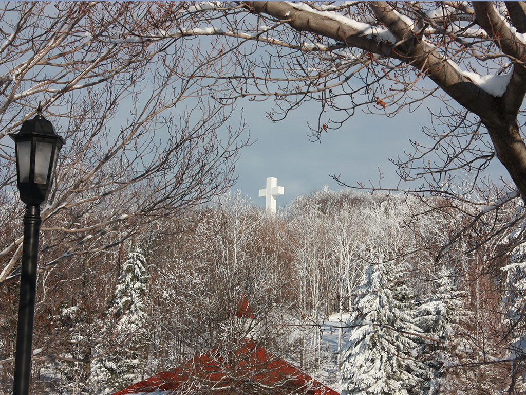 cross winter 5 powerpoint